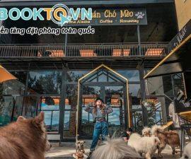 hội quán chó mèo đà lạt